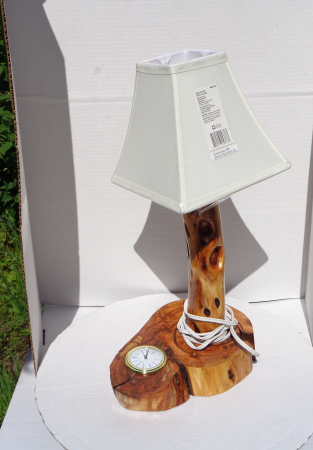 Diamond Willow Lamp / Insert Clock